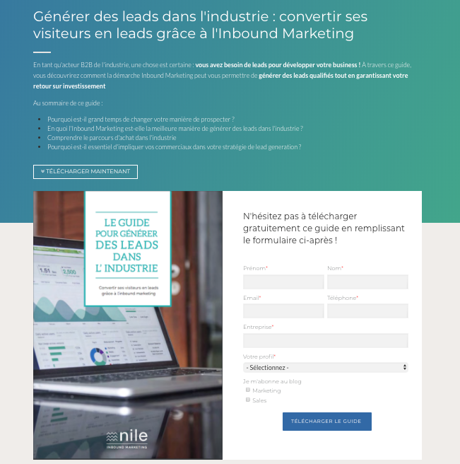 exemple-landing-page-industrie